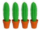 41062-cactus2